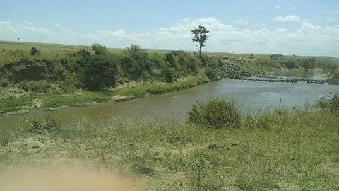 masai mara safari, weekend break, short break safaris