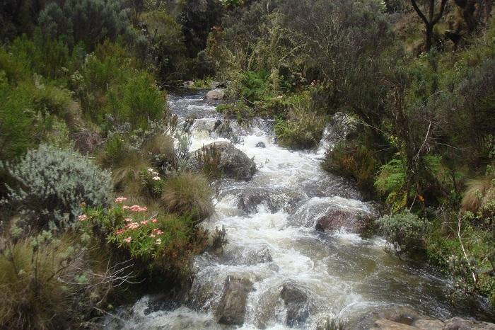 Trekking Mount Kenya, Hiking Mount Kenya, Kenya Climbing, Hiking Kenya,