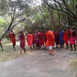 masai entertainment group
