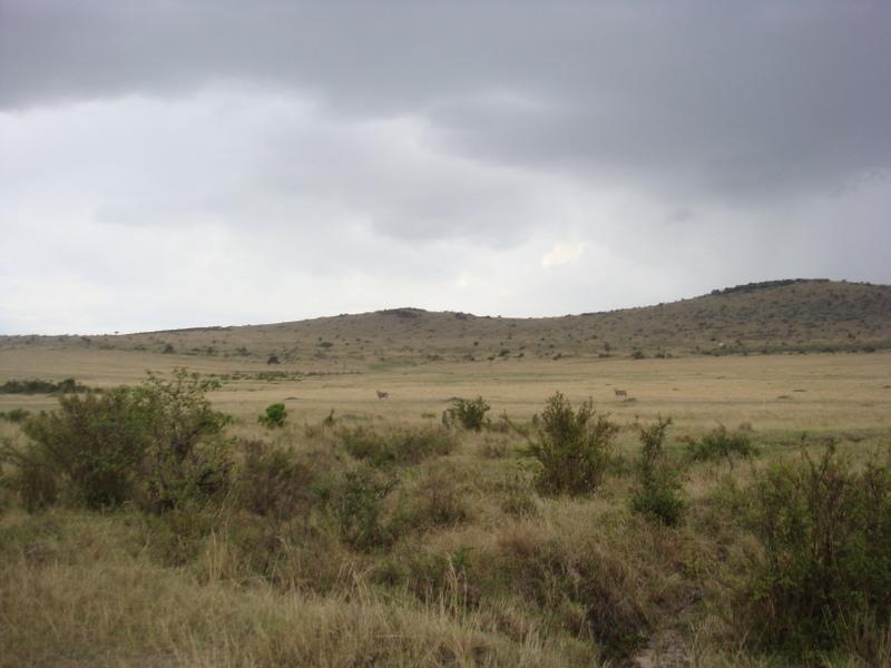 Kenya Adventure Safaris-yha kenya travel