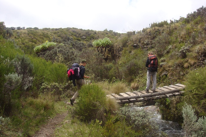 Trekking Mount Kenya - Trekking to the summit