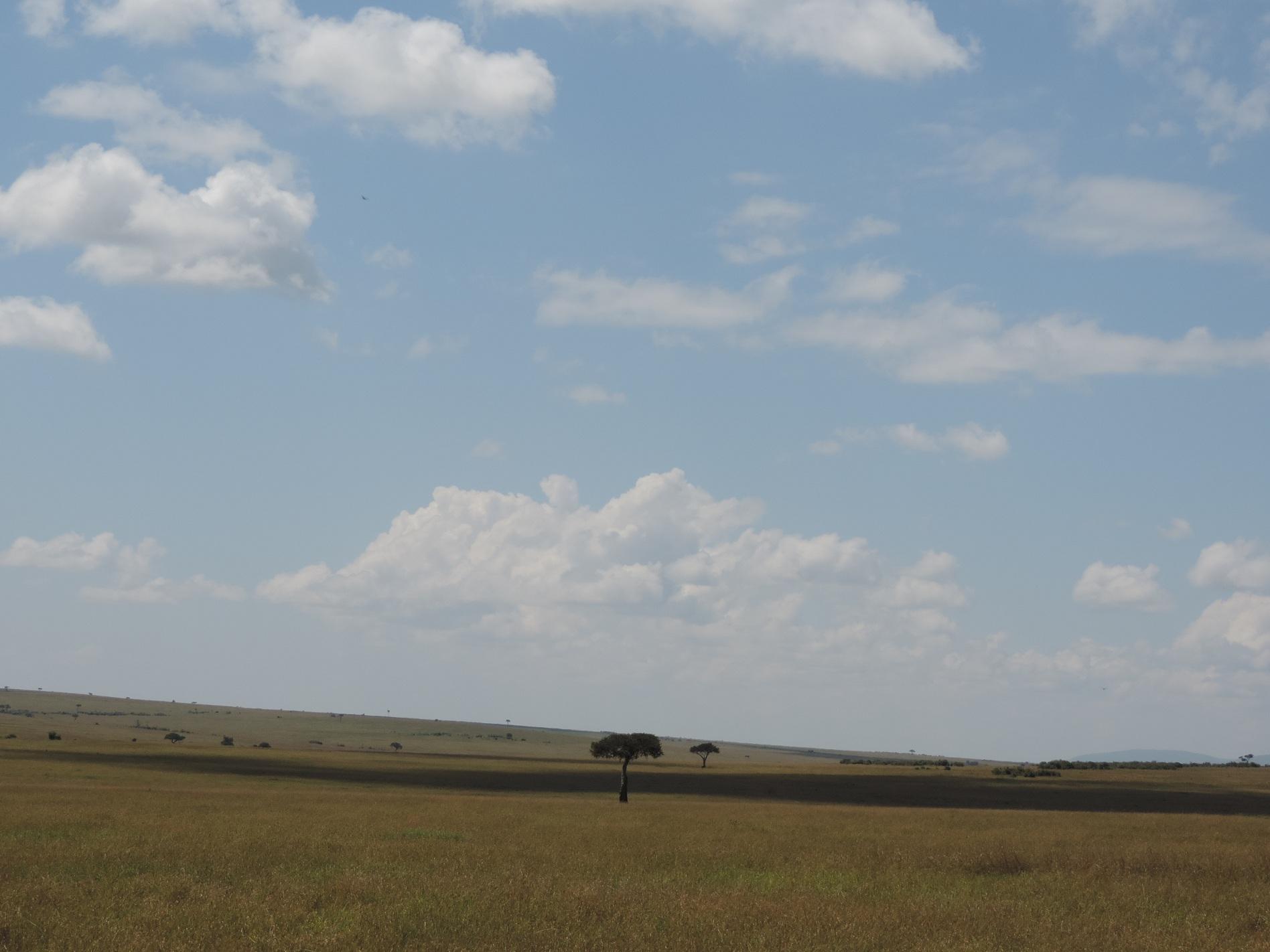 small group safaris,small group tours.budget camping safari