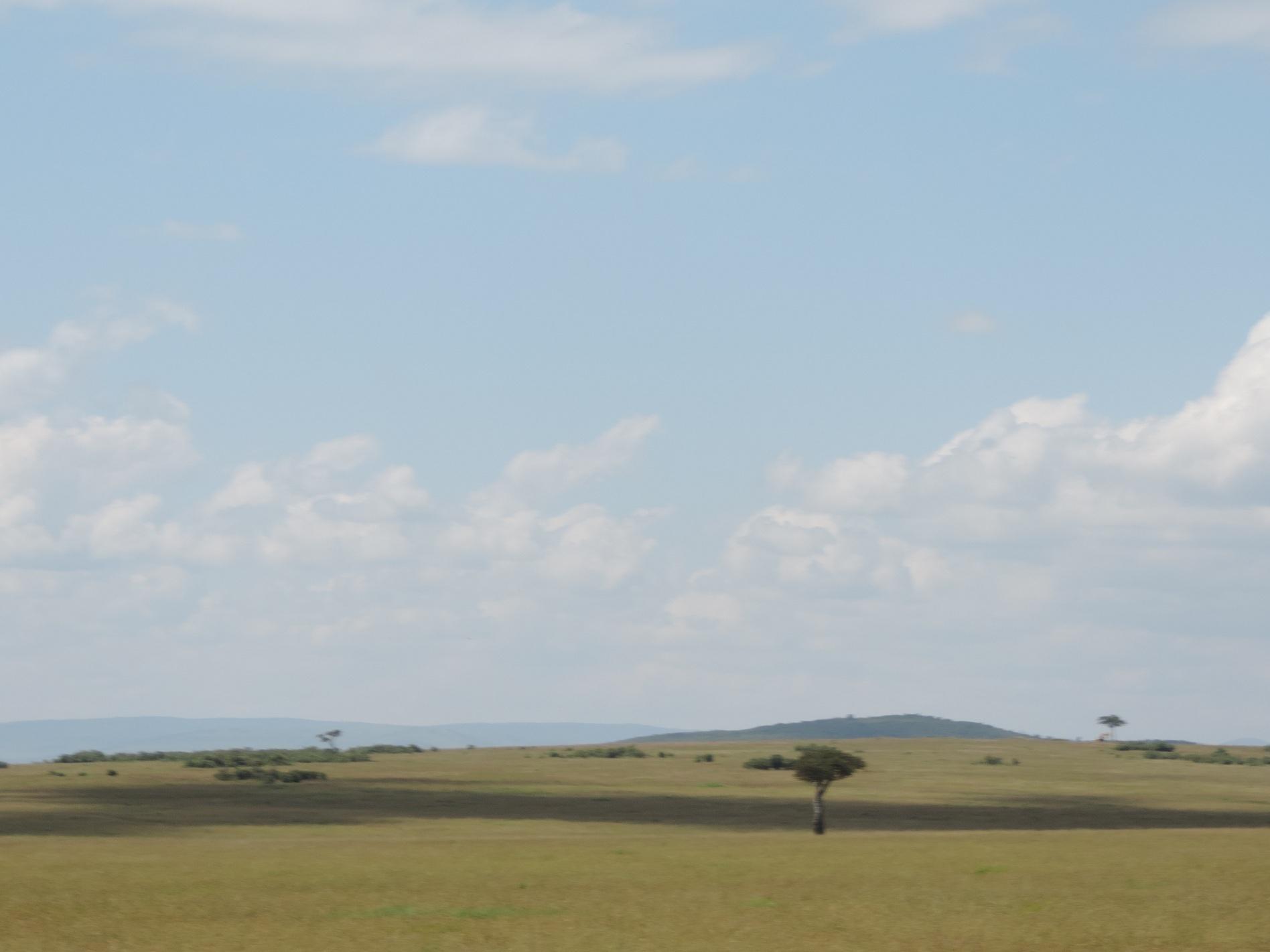 small group safaris-Masai Mara Kenya-adventure travel