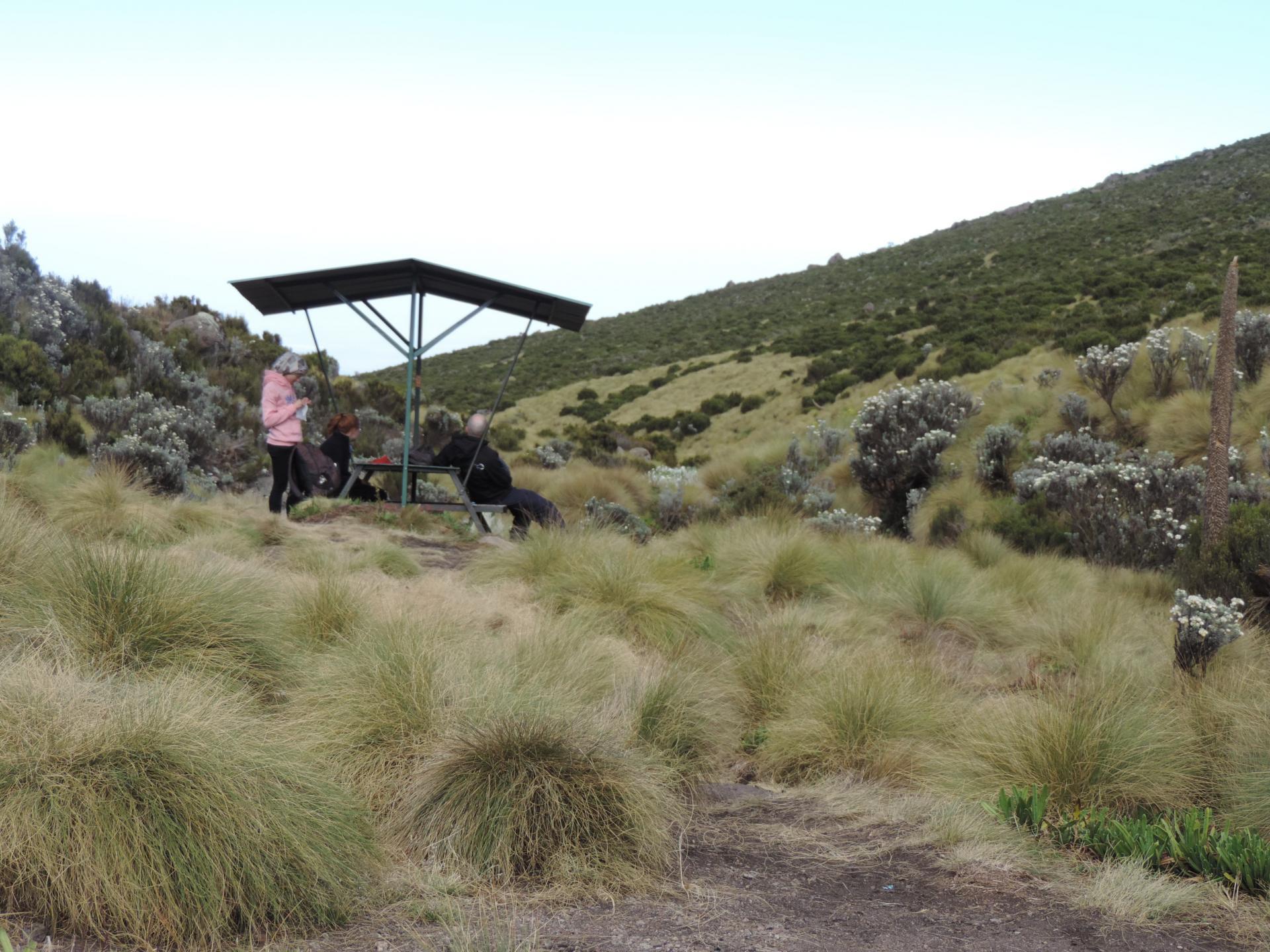 trekking trips Kenya, climbing mount Kenya, climbing Mount Kenya in Kenya, mount Kenya hiking, walking, route, trekking routes, yha Kenya travel, photos
