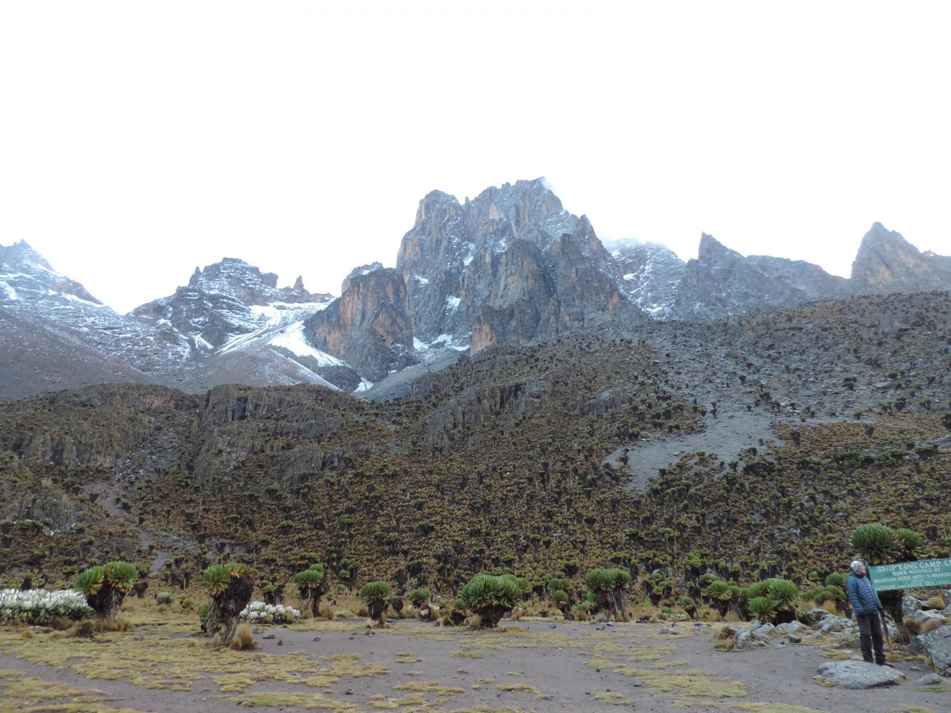 Mt Kenya Summit,mountain adventures, budget travel, trekking, hiking, mount kenya safaris, small group adventures, mountain climbing, climbing Kenya mountain,Mountain Kenya