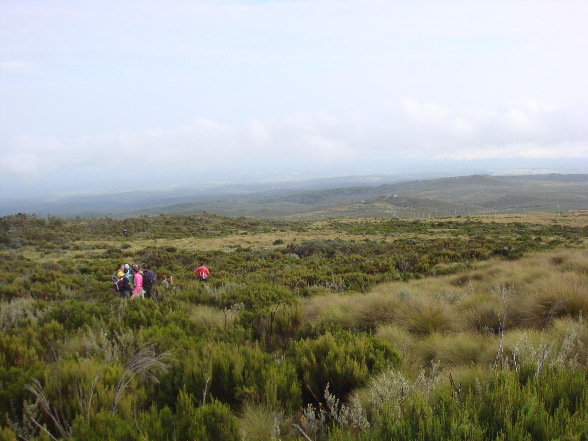 Trekking Mount kenya Routes