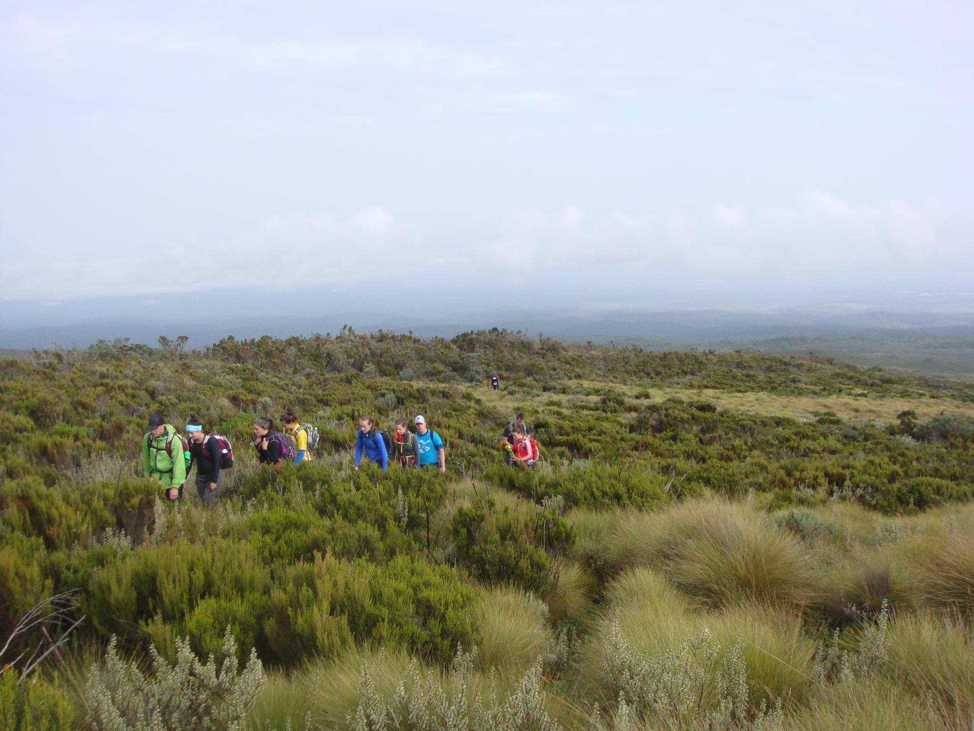 Group Trekking Mount kenya Routes