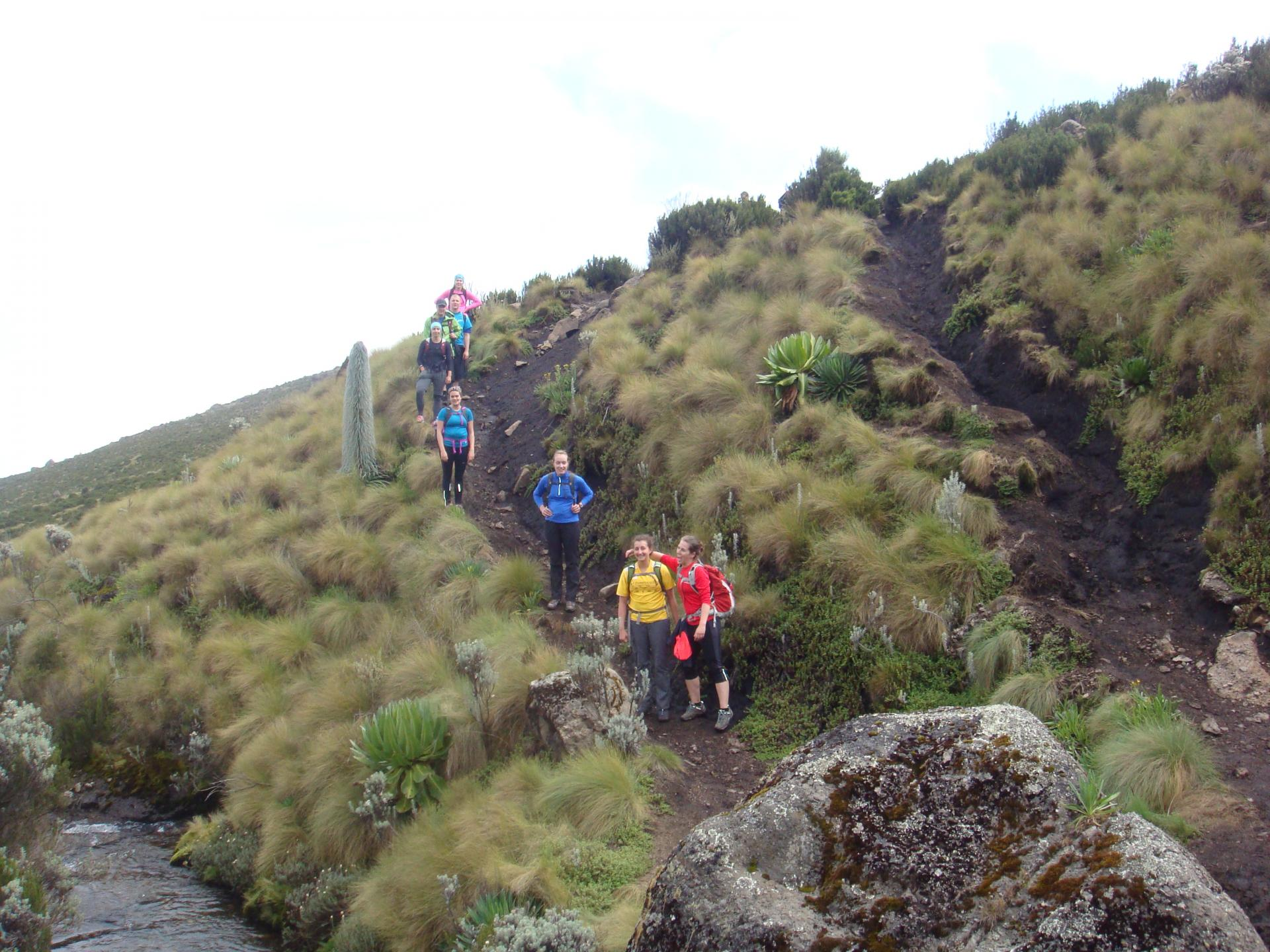 Small group adventure climbing Mt Kenya.