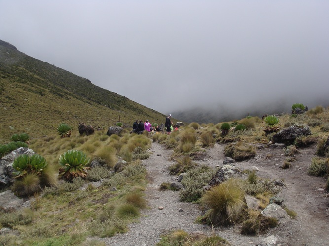 Mount Kenya Adventure Trekking Route