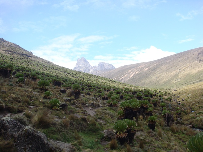 Climb Mount kenya to the Peaks